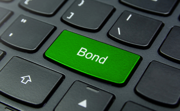 NN IP unveils corporate green bond fund